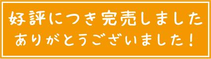 big_完売